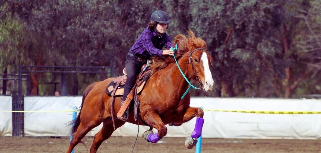 Best Horse Riding Helmet For Hot Weather